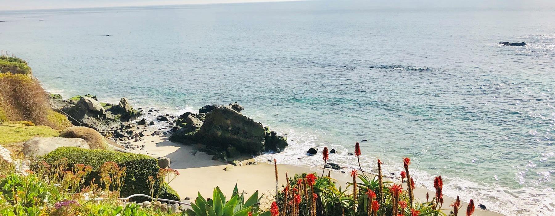 Landscape shot of laguna beach